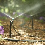Why Contact A Landscaper For Your Home