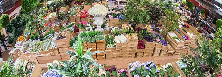 Why Buying Plants Wholesale Is Worth It Kemeys